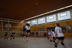 160213_Volleyball_DSC_0438