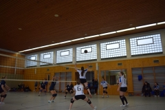 160213_Volleyball_DSC_0447