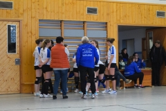 160213_Volleyball_DSC_0465
