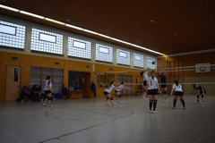 160213_Volleyball_DSC_0474