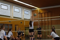 160213_Volleyball_DSC_0556