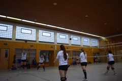 160213_Volleyball_DSC_0604