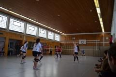 160312_Mutterstadt-Steinwenden_DSC_0010