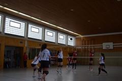 160312_Mutterstadt-Steinwenden_DSC_0017