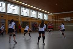 160312_Mutterstadt-Steinwenden_DSC_0019