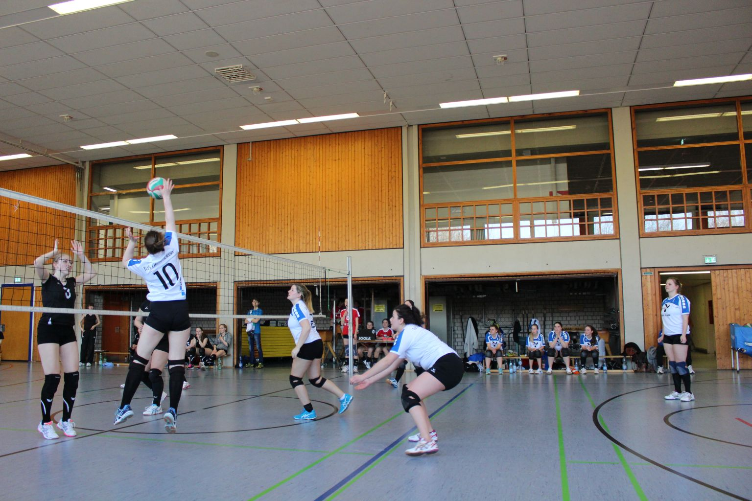 170325_Volleyball_IMG_4183