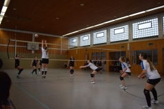 180127_Volleyball_DSC_0035