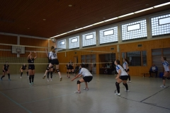 180127_Volleyball_DSC_0079