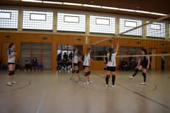 180127_Volleyball_DSC_0116