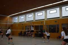 180127_Volleyball_DSC_0226